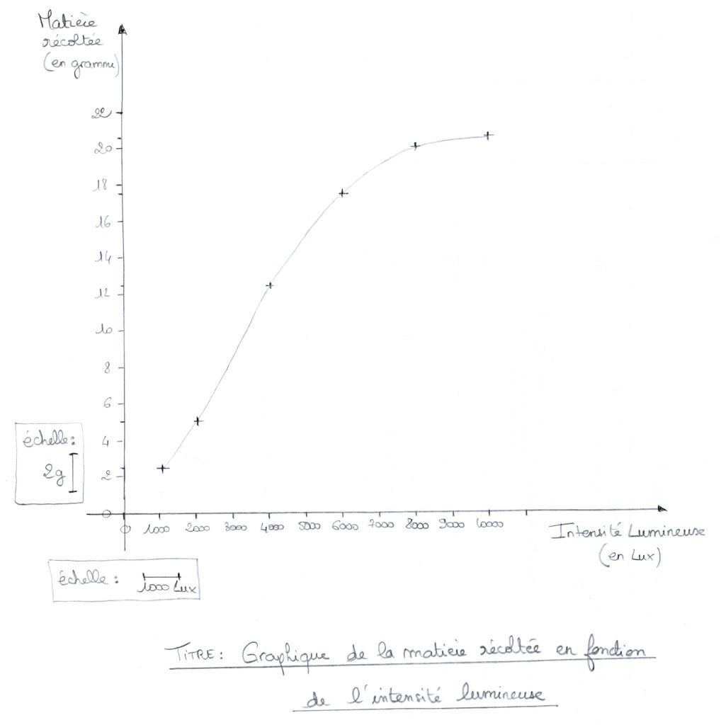 graphique-5e